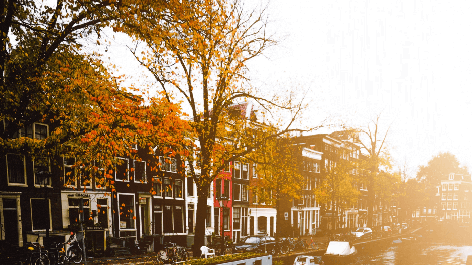 Taxi Amsterdam Oost bestellen? Bestel bij de Amsterdamse Taxi Service. Van een taxi Dappermarkt tot een verre rit.